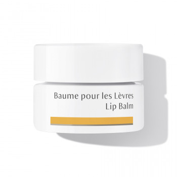 Soothes and regenerates: Dr. Hauschka Lip Balm